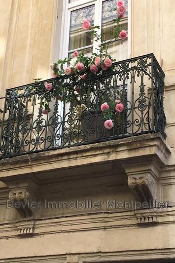 Photo n°9 - Vente appartement Montpellier 34000 - 540 800 €