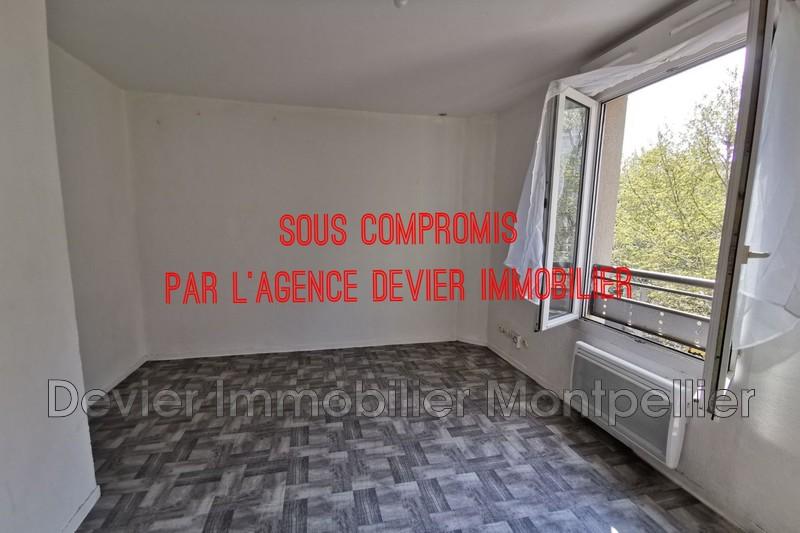 Appartement Montpellier Richter,   achat appartement  1 pièce   18m²