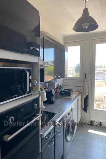 Photo n°3 - Vente appartement Montpellier 34000 - 235 000 €