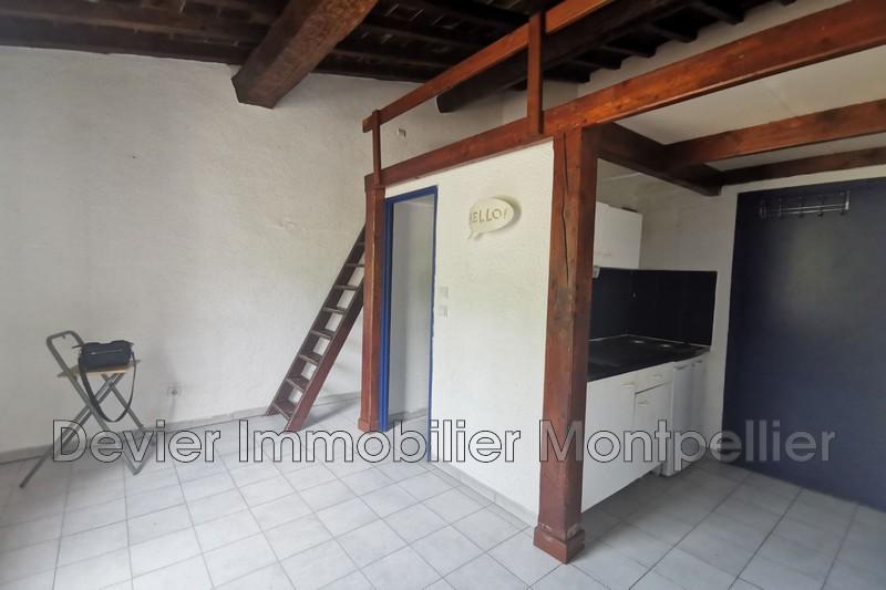 Appartement Montpellier Gambetta,   achat appartement  1 pièce   16m²