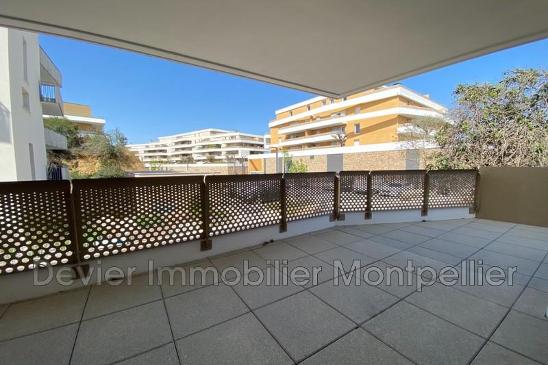 Appartement Castelnau-le-Lez Castelnau le lez,   achat appartement  2 pièces   42m²