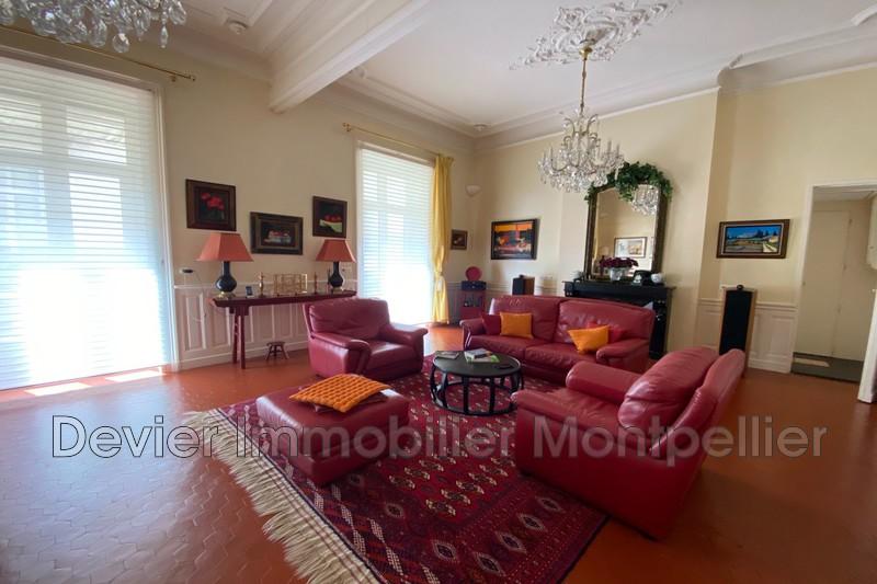 Photo Appartement Montpellier Comédie,   achat appartement  6 pièces   150m²