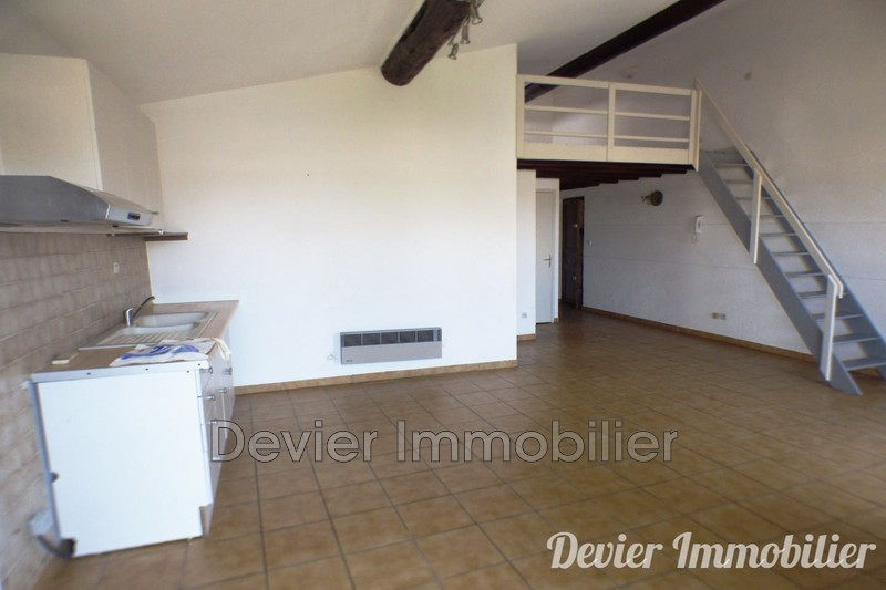 Appartement Saint-Geniès-des-Mourgues Castries,  Location appartement  2 pièces   50 m²