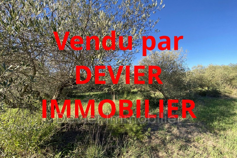 Terrain agricole Saint-Geniès-des-Mourgues Castries,   achat terrain agricole   4040m²