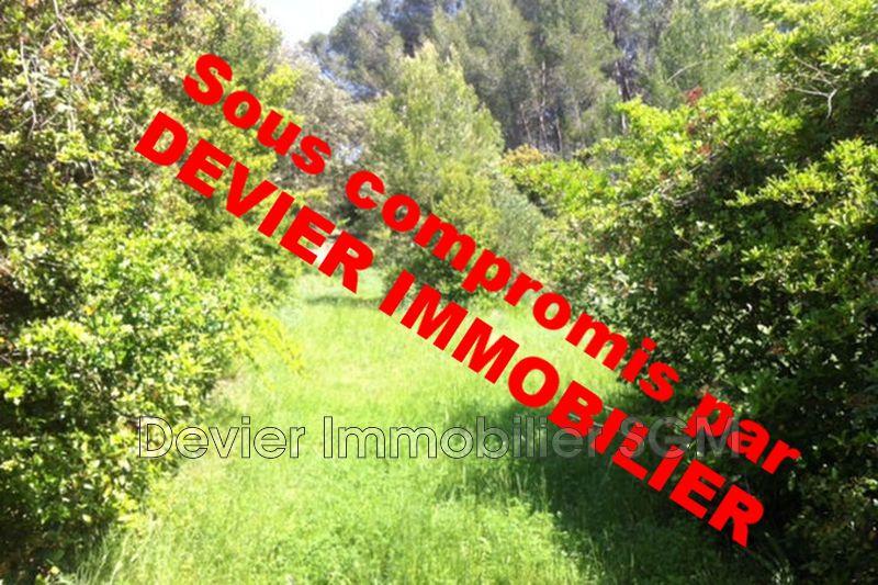 Terrain non constructible Saint-Geniès-des-Mourgues Castries,   achat terrain non constructible   3090m²