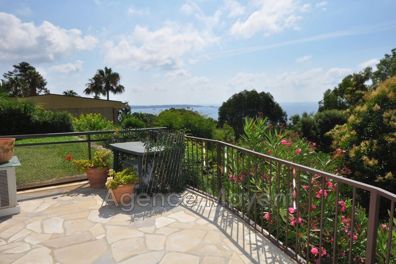 Photo Appartement Cannes Super cannes,   achat appartement  1 pièce   33 m²