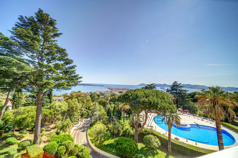 Photo Apartment Cannes La californie,   to buy apartment  4 rooms   105 m²