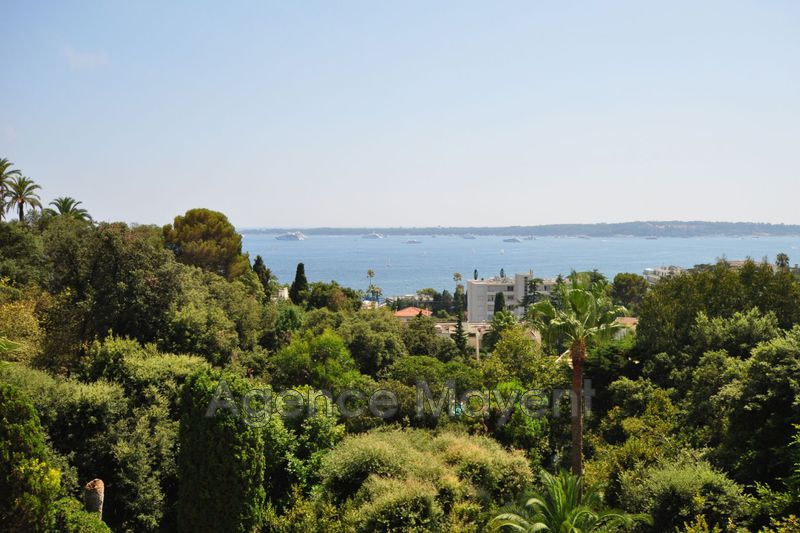Photo Apartment Cannes La californie,   to buy apartment  2 rooms   83 m²