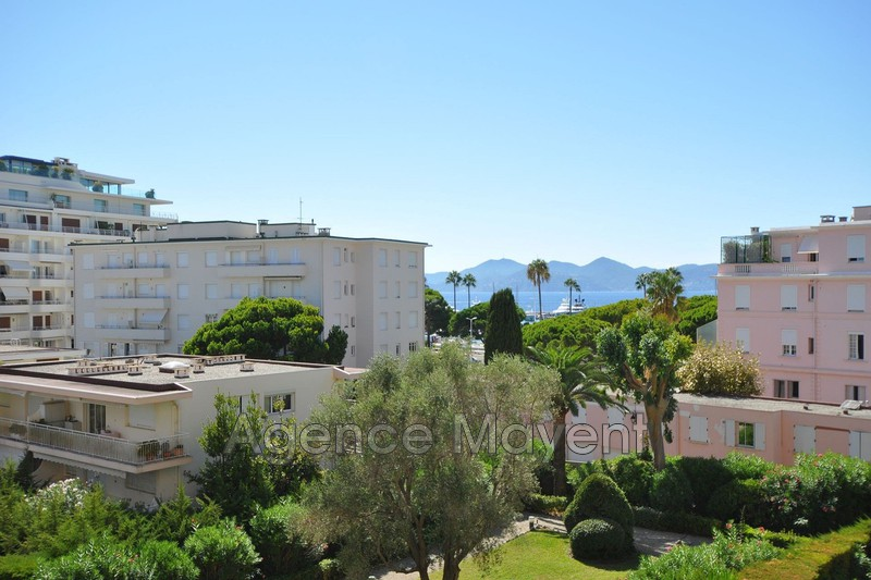 Photo Appartement Cannes Palm beach,   achat appartement  2 pièces   53 m²