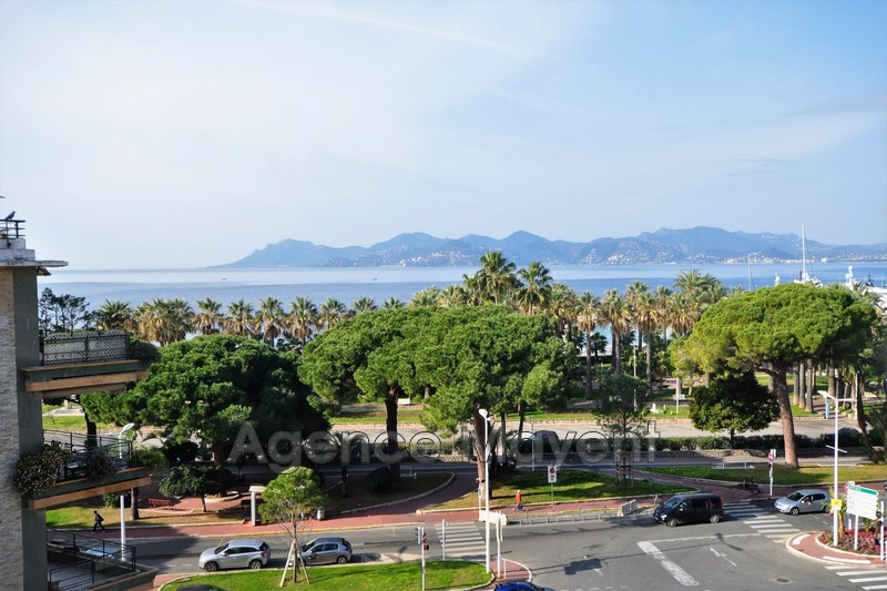 Photo Appartement Cannes Palm beach,   achat appartement  3 pièces   86 m²