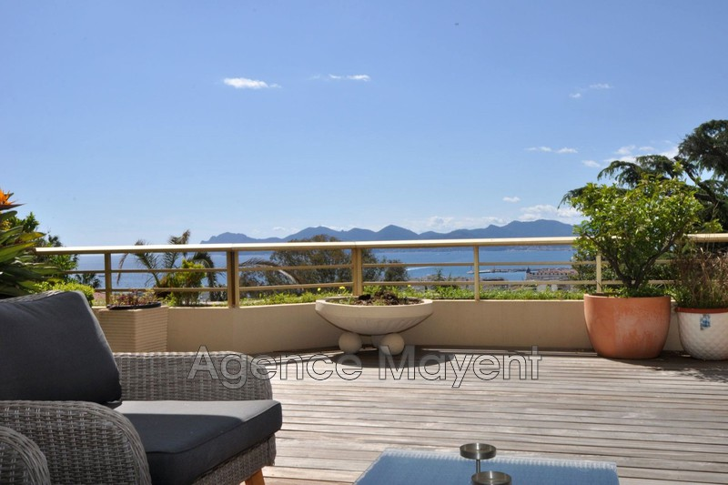 Photo Appartement Cannes Basse californie,   achat appartement  4 pièces   118 m²