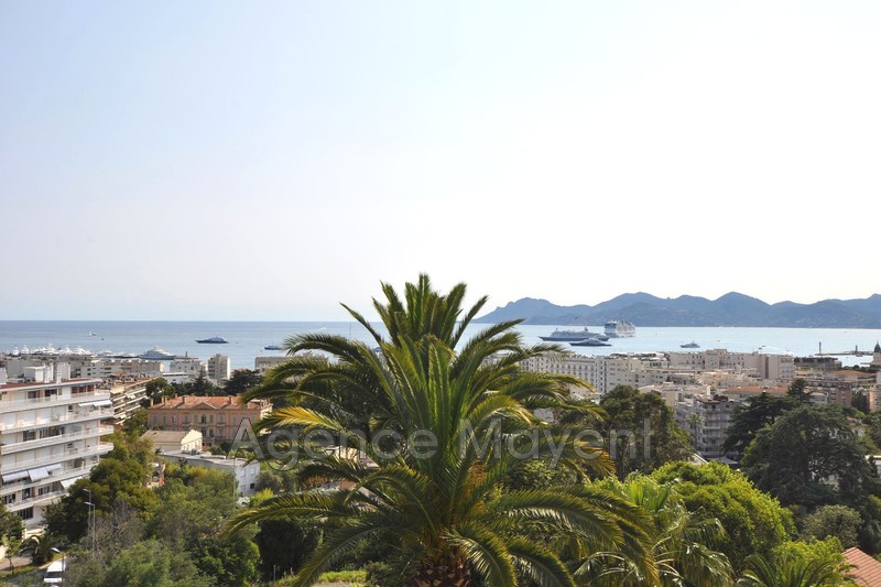 Photo Apartment Cannes Basse californie,   to buy apartment  2 rooms   52 m²