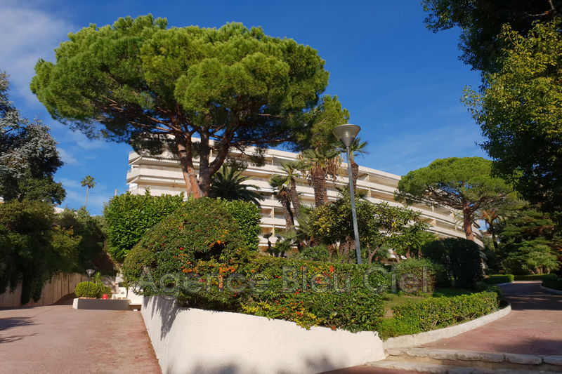 Photo Apartment Cannes Basse californie,   to buy apartment  2 rooms   70 m²