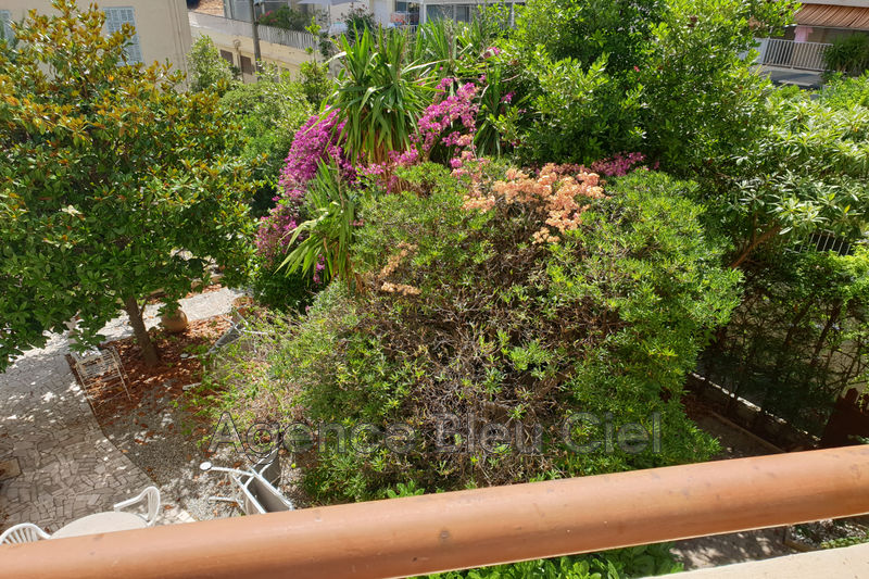 Photo Apartment Cannes Basse californie,   to buy apartment  2 rooms   41 m²