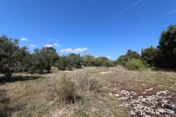Vente terrain Gordes IMG_4329.JPG