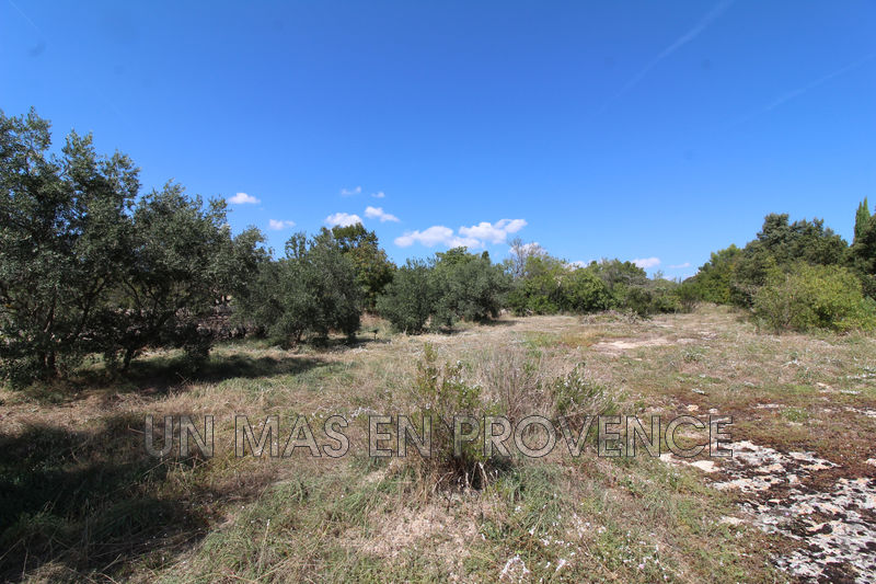 Vente terrain Gordes  Land Gordes Luberon,   to buy land   913 m²