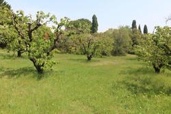 Vente terrain Gordes IMG_5630.JPG