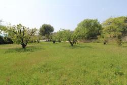 Vente terrain Gordes IMG_5635.JPG