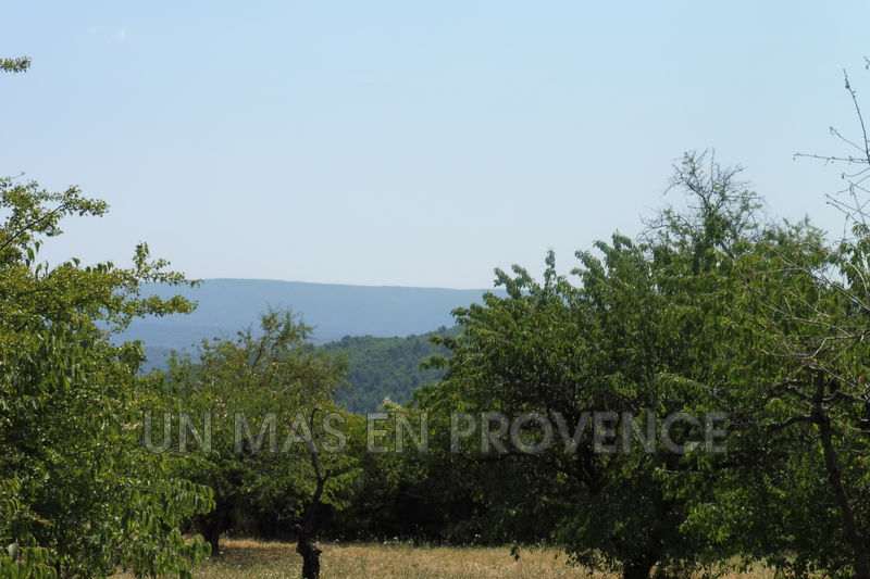 Vente terrain Gordes  Land Gordes Luberon,   to buy land   1100 m²