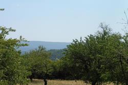 Vente terrain Gordes P1010143.JPG