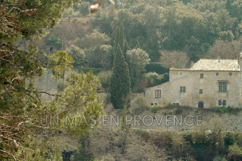 Vente maison en pierre Oppède  Stone house Oppède Luberon,   to buy stone house  5 bedrooms   250 m²