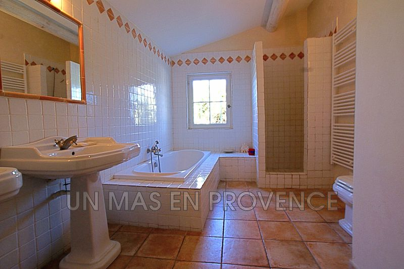 Photo n°12 - Vente Maison mas Cavaillon 84300 - 795 000 €