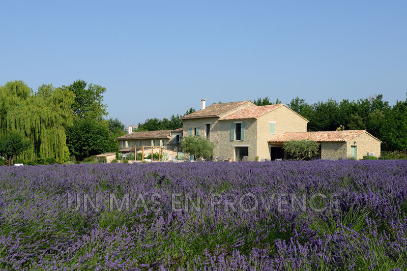Vente demeure de prestige Gordes  Luxury property Gordes   to buy luxury property  11 bedrooms   500 m²