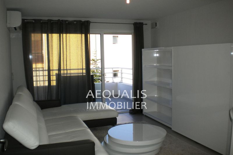 Appartement Saint-Laurent-du-Var Tzanck,  Location appartement  2 pièces   42 m²