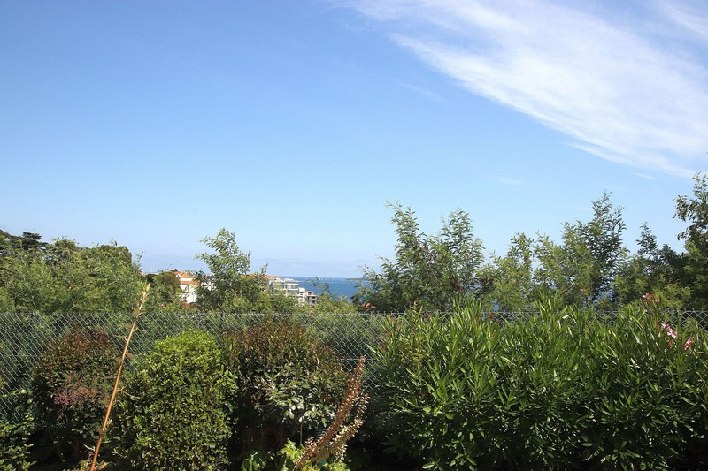 Photo Apartment Cannes Cannes villa francia,   to buy apartment  1 room   23 m²