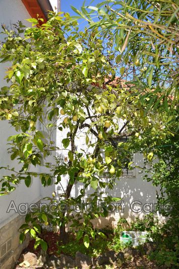 Photo n°6 - Vente maison Cap d'Antibes 06160 - 690 000 €