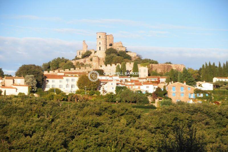 Photo Villa Grimaud Golfe de st tropez,   achat villa  3 chambres   240m²