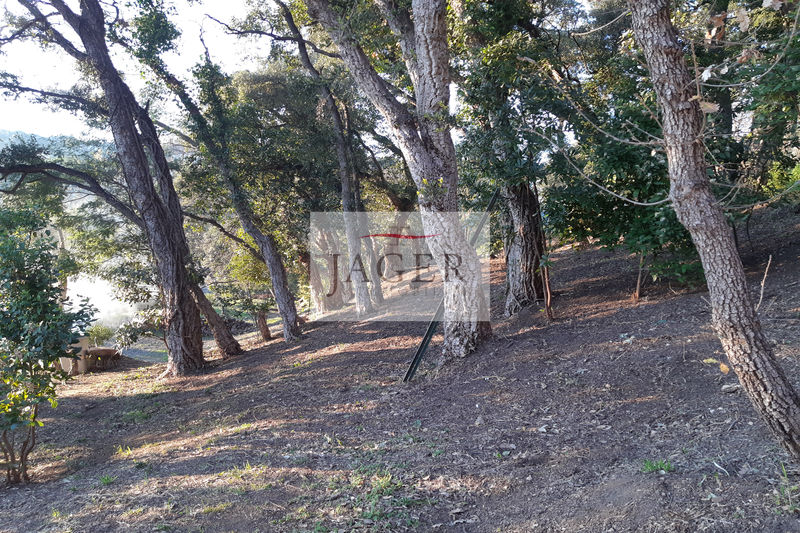 Photo n°4 - Vente terrain constructible Grimaud 83310 - 530 000 €