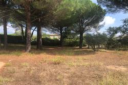 Vente terrain Cogolin IMG_1881