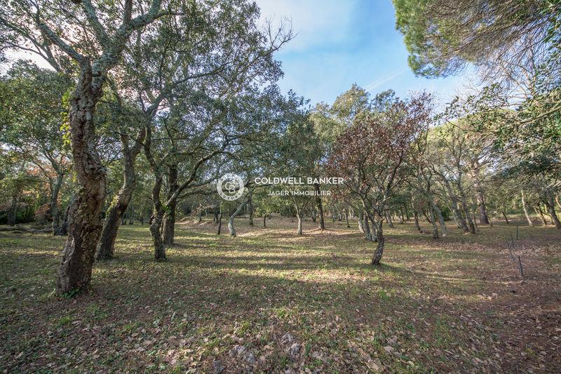 Vente villa provençale Gassin  Villa Gassin Golfe de st tropez,   to buy villa  4 bedroom   163m²