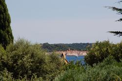Vente villa Grimaud IMG_6431