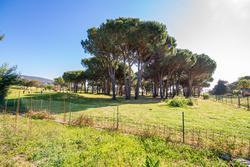 Vente villa Grimaud IMG_4499