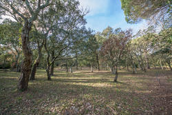 Vente villa provençale Gassin IMG_7435