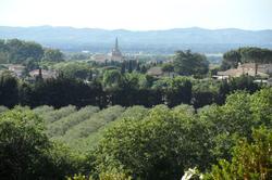 Location Saisonnière Maisons - Villas Saint-Rémy-De-Provence Photo 5