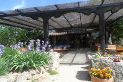 Location Saisonnière Maisons - Villas Fontvieille Photo 8