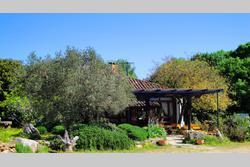 Location Saisonnière Maisons - Villas Fontvieille Photo 10