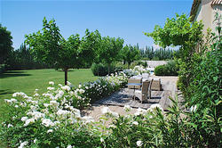 Location saisonnière maison en pierre Maussane-les-Alpilles