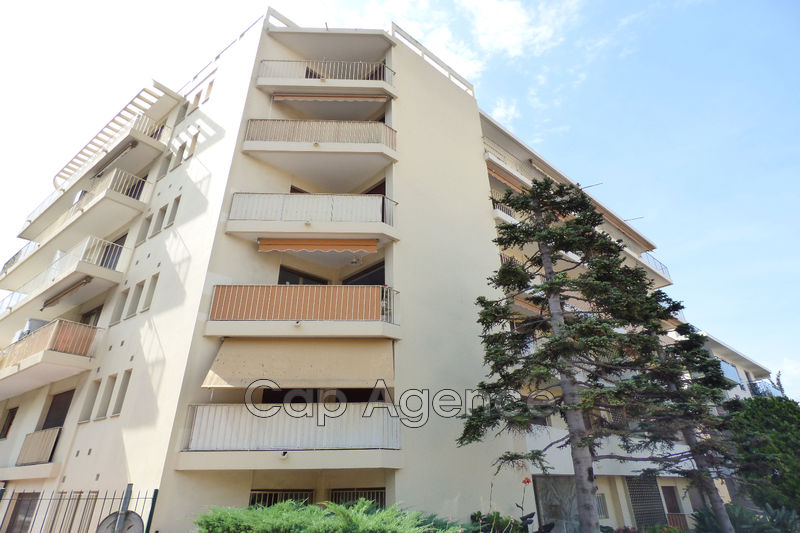 Photo Apartment Juan-les-Pins Pinède,   to buy apartment  2 rooms   44 m²