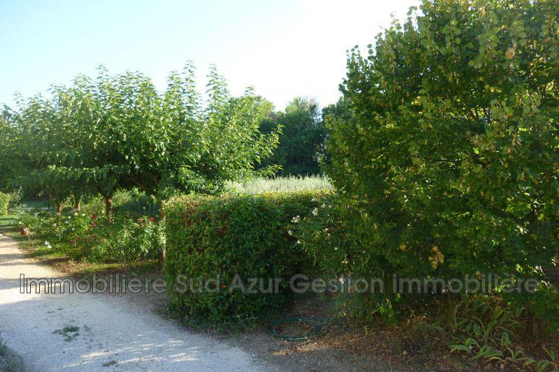 Photo n°5 - Location maison de campagne Solliès-Pont 83210 - 1 050 €