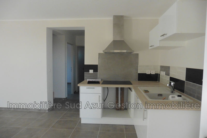 Photo n°4 - Location appartement Solliès-Pont 83210 - 850 €