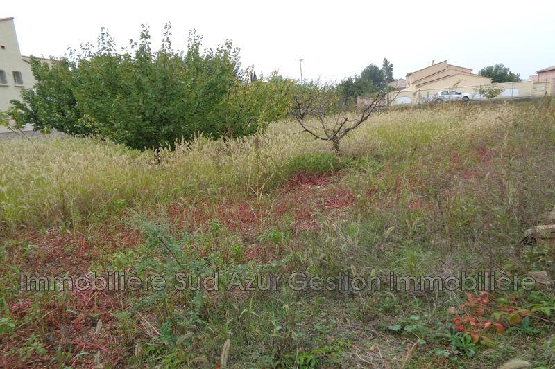 Photo Terrain à bâtir Solliès-Pont   achat terrain à bâtir   506m²