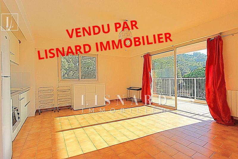 Photo Appartement Vallauris   achat appartement  1 pièce   33m²