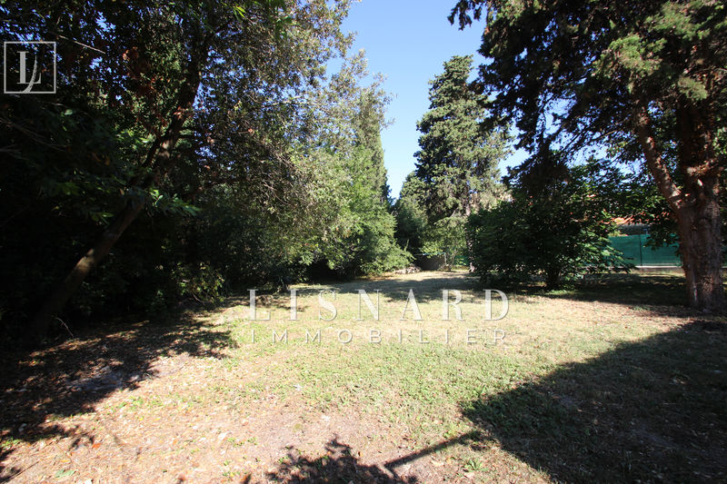 Photo Terrain Vallauris   achat terrain   850 m²