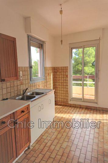 Photo n°5 - Vente appartement Banyuls-sur-Mer 66650 - 162 750 €