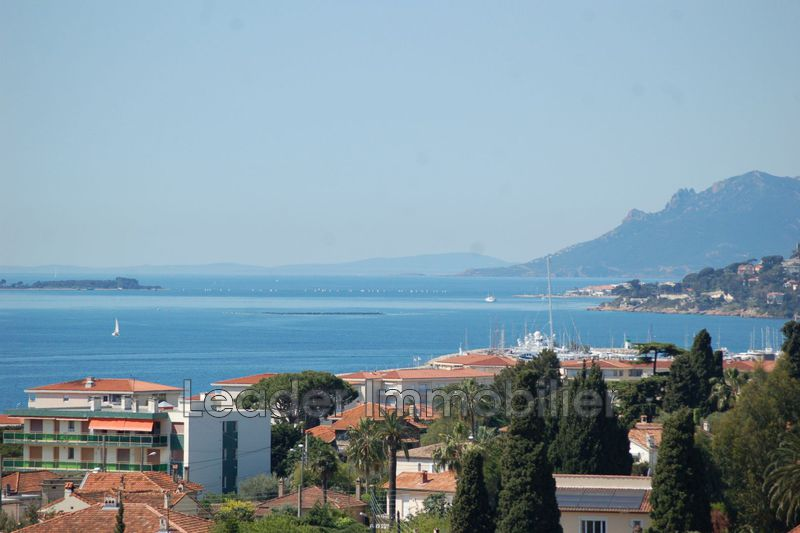 maison  5 rooms  Antibes Peyregoue  255 m² -