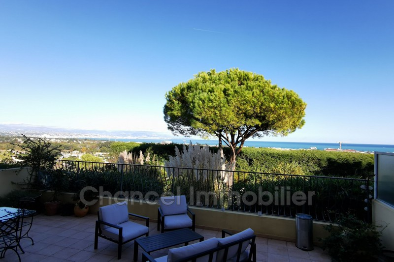 Photo Apartment Antibes Constance,   to buy apartment  2 rooms   36 m²
